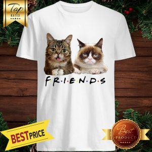 Cats Friends Bub Grumpy Shirt