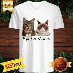 Cats Friends Bub Grumpy V-neck