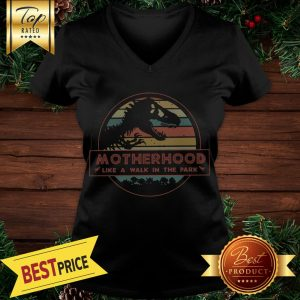 Dinosaurs motherhood like a walk in the park vintage V-neck